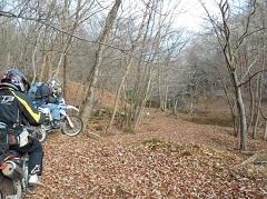 33-bike-5c81d.jpg